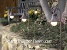 Đèn sáng trong vườn và vận may về hôn nhân