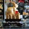 Thỏ vàng bên châu đỏ H424G