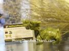 Long quy lam ngọc trơn nhỏ HM035
