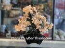 Cây thạch anh vàng bonsai KC105