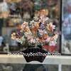 Cây tài lộc thạch anh lục sắc thân bonsai KC117