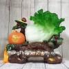 Bắp cải xanh lớn bên cây trái cam đế gỗ LN074