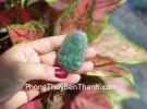 Phật bản mệnh Phỉ Thúy xanh đậm sắc sảo A+ lớn, tuổi Tuất, Hợi S6864-8
