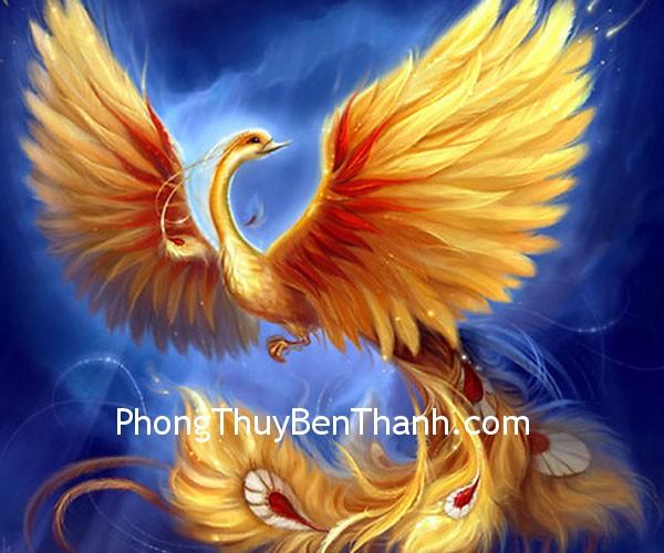 chim phuong hoang Đàn ông độc thân và biểu tượng chim phượng hoàng