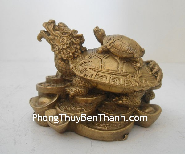 long quy dong nho d1120 021 Long Quy – Rùa đầu rồng trên đống tiền