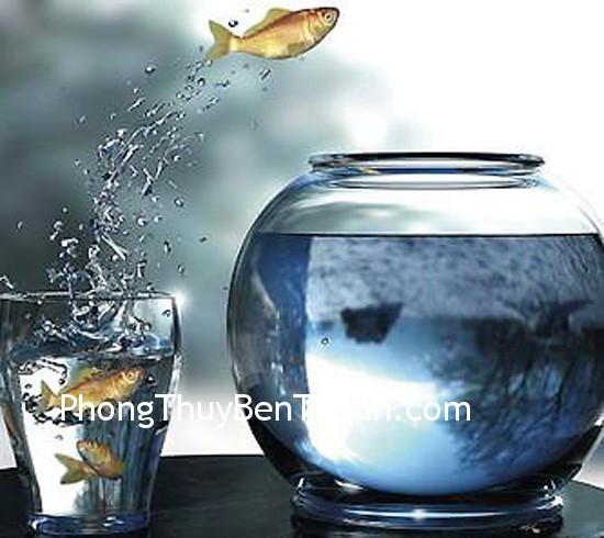 moi quan he Cá trong nước kết hợp hai biểu tượng mạnh nhất về thịnh vượng