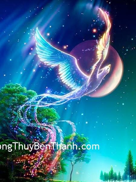 phuonghoang Cải thiện vận may với phượng hoàng linh thiêng
