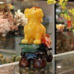 c014a cho cam mau don 2 150x150 Chó vàng bên hoa mẫu đơn phú quý C014A