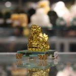 c089a long quy 3 150x150 Long quy vàng trên tiền C089A